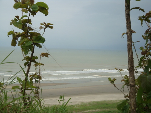This photo is Himchory in Cox's Bazar