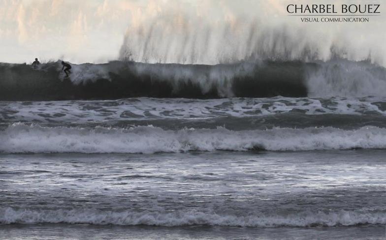 vegetox, Sandy Beach - Chekka