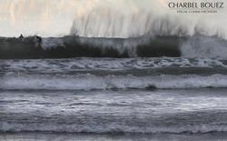 vegetox, Sandy Beach - Chekka photo