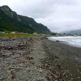 Shoreline, Te Araroa
