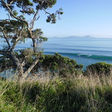 just over the smelly creek,and up the hill..feb..2013, Waipu Cove