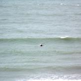 Golden Bay windswell, Para Para Rivermouth