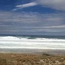 Ocean Beach Left, Ocean Beach (Whangarei)