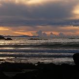 New swell, Whangamoa