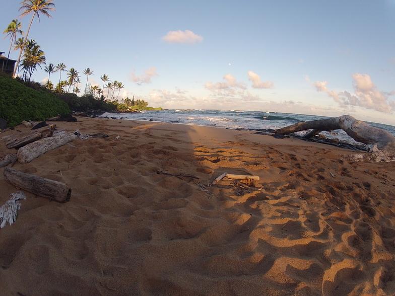 Wailua/Horners surf break