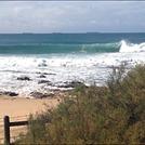 Puckeys - North Beach, Wollongong North Beach