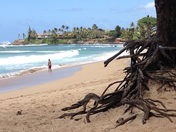 Paia Bay photo