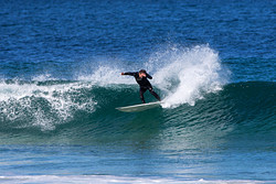 Whip it, Bar Reef photo