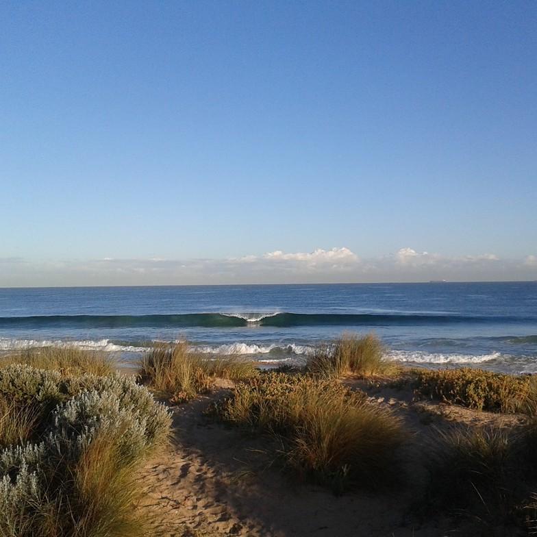 bp 'morning glory', Bunbury BP Reef