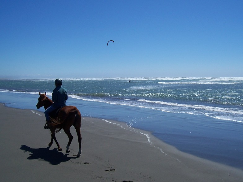 Clam Beach Kite Surfing by Horseback, Little River Clam Beach