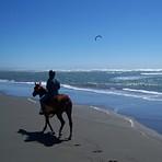 Clam Beach Kite Surfing by Horseback, Little River Clam Beach