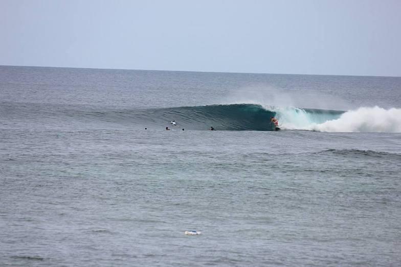September Swell 2013, Majestics