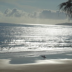 Sunny morning at Rainbow beach, Rainbow Bay