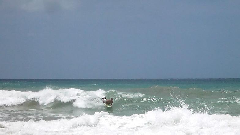 Bodyboarding Costa Sur, Embassy Beach