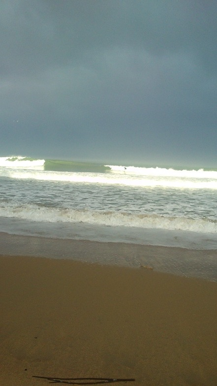 All Day Bay surf break