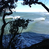 locals only, Waihi Beach