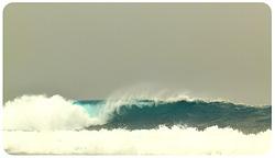 Tongo Reef- photo