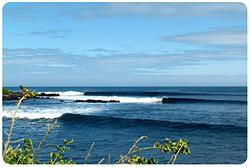 Indonesian Lines-, Tongo Reef photo