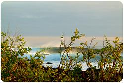 Seeing Behind, Tongo Reef photo