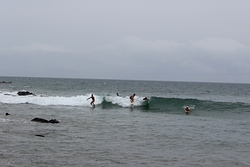 Party Wave, Shipwreck photo
