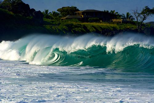 The Bay, Waimea Bay/Pinballs