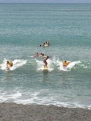West Shore Beach photo