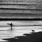 Surfer and Dog, Cowells Cove