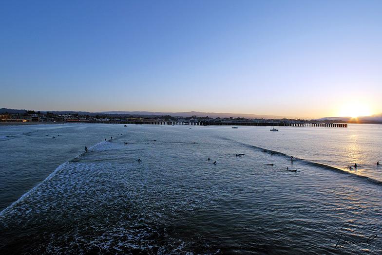 Cowells Cove surf break